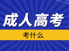 2021湖南成人高考考试科目大全